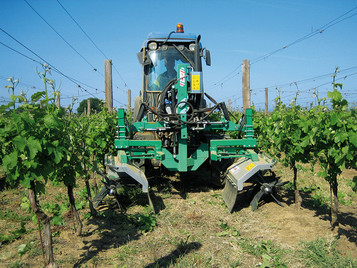 Frame Vine shoot tipping machine with 2 header, max height 65 cm