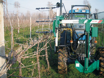 2 or 3 bars system for dry pruning