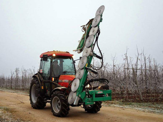 Lopping machine for orchards with disks CKD